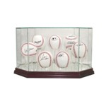 HOCKEY PUCK REAL GLASS DISPLAY CASE FOR 7 PUCKS
