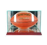ETCHED GLASS FOOTBALL DISPLAY CASE - RECTANGLE - DESKTOP