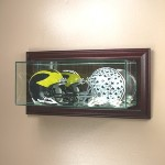 ETCHED GLASS DOUBLE 2 MINI HELMET DISPLAY CASE � WALL MOUNT